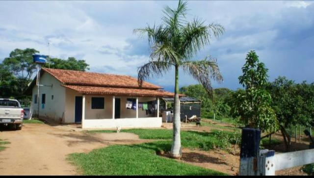 Fazenda 225 km de Goiânia município de Ipameri
