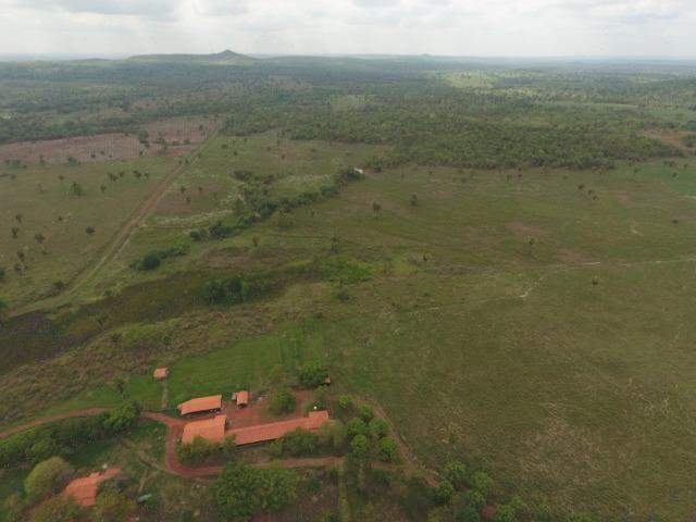 Fazenda 5.900 há (1.219 alq) pronta para produção Bovina norte do Tocantins - Foto 13