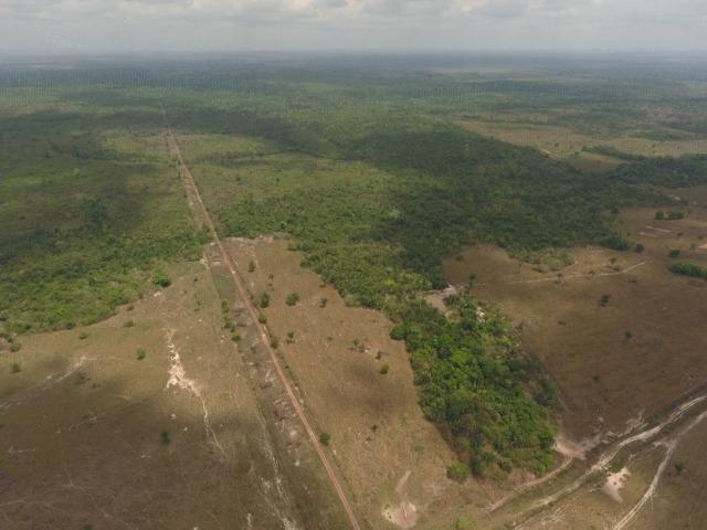 Fazenda 5.900 há (1.219 alq) pronta para produção Bovina norte do Tocantins - Foto 17