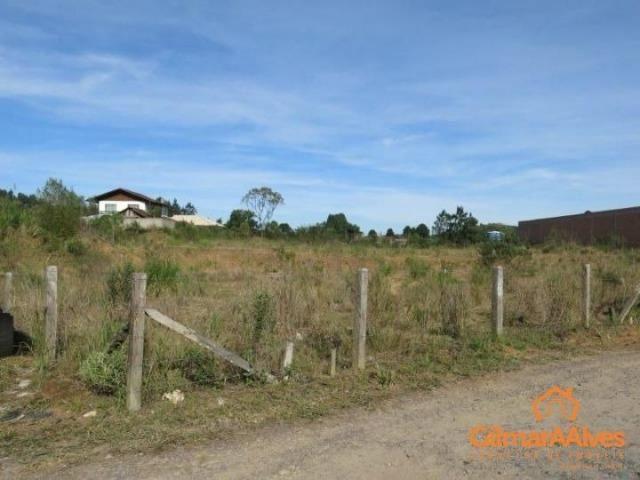 Terreno para Venda, 5.277,53 m², São Bento do Sul / SC, bairro Serra Alta - Foto 4