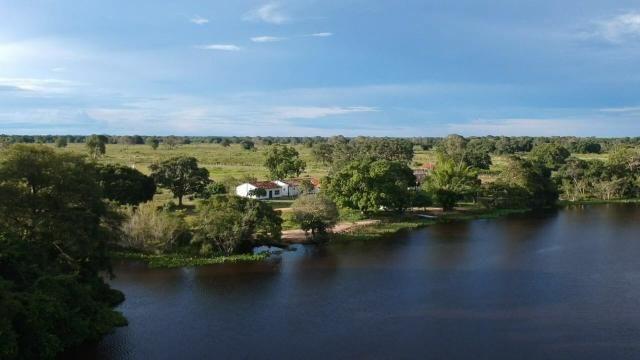 Fazenda 9.715 hectares no pantanal de Poconé MT - Foto 11