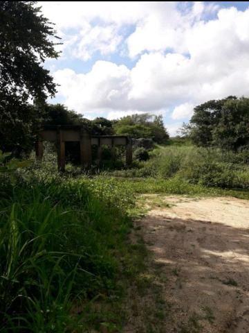 Fazenda rural em forquilha - Foto 9