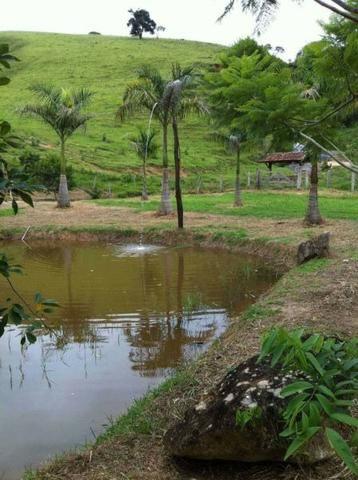 Linda Fazenda no Vale do Paraiba, porteira fechada - Cód 1505 - Foto 6