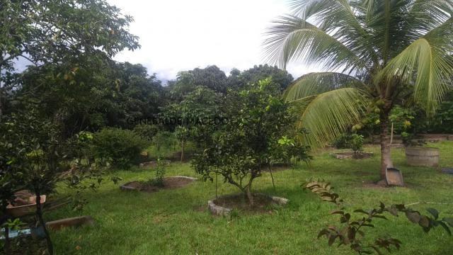 Chácara, Zona Rural, São Gonçalo dos Campos-BA - Foto 9