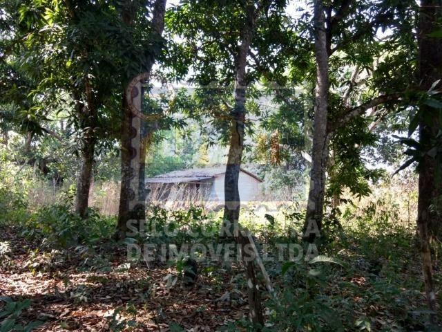 Otima Fazenda Muni. de Santo Antonio de Leveger a 20 km de Cuiabá - Foto 6