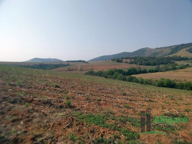 Fazenda Em Pouso Alegre - Foto 6