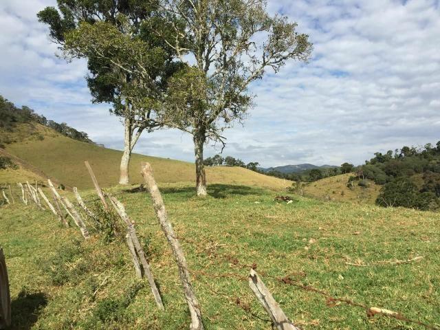 Excelente Fazenda 1km do centro de Delfim Moreira - Foto 4