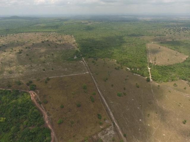 Fazenda 5.900 há (1.219 alq) pronta para produção Bovina norte do Tocantins - Foto 16