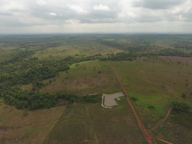 Fazenda 5.900 há (1.219 alq) pronta para produção Bovina norte do Tocantins - Foto 8