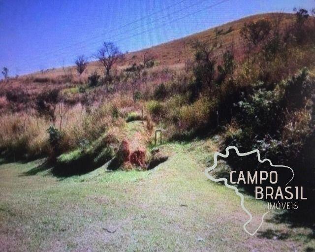 Campo Brasil Imóveis, realizando seu sonho rural! Fazenda de 100aq no Vale do Paraíba! - Foto 15