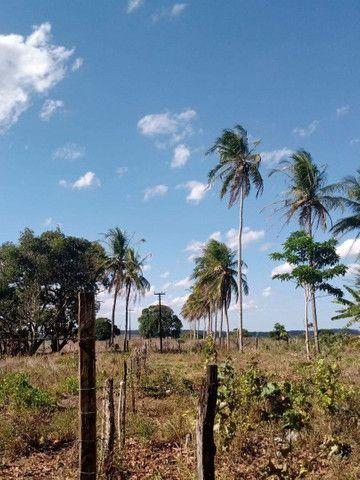 Vende um terreno com 5.5 hectares