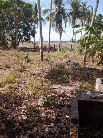 Vende um terreno com 5.5 hectares - Foto 2