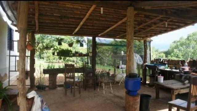 Fazenda 225 km de Goiânia município de Ipameri - Foto 11