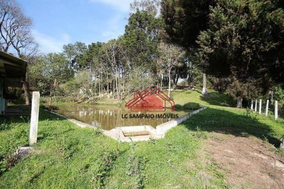 Chácara toda documentada com área de 36.000 m² (1,5 alqueire), toda cercada, com 4 tanques - Foto 17