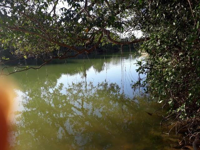 Chácara 04 hectares - Flores de Goiás - Foto 11