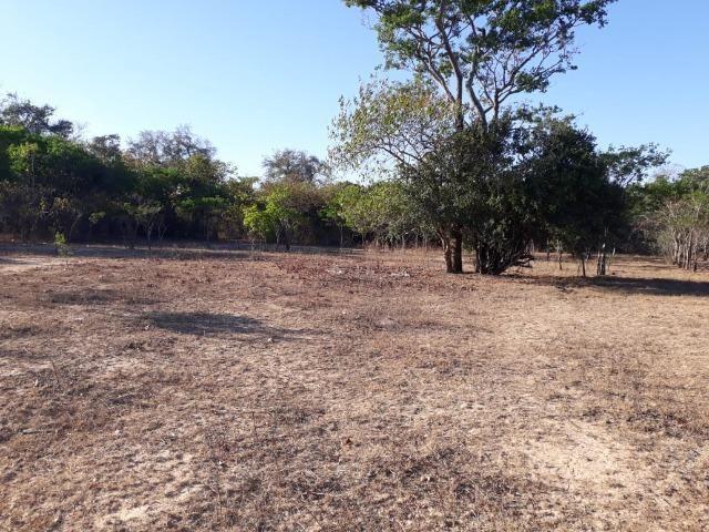 Chácara 04 hectares - Flores de Goiás