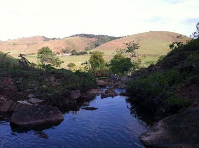 Linda Fazenda no Vale do Paraiba, porteira fechada - Cód 1505 - Foto 4