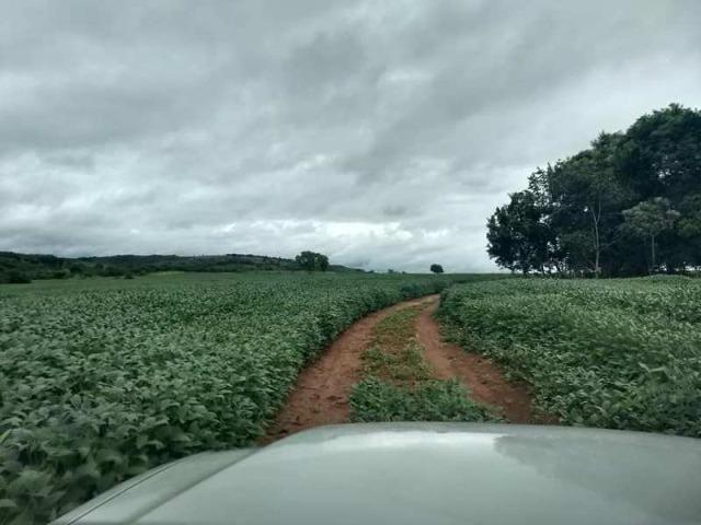 60 Alq. Troca Por Faz. Tocantins Mato Grosso Ou Goias + Acima 400 Alq - Foto 5