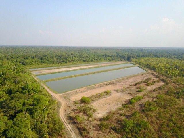 Fazenda com 123 hectares e 4 tanques de peixes - Foto 4