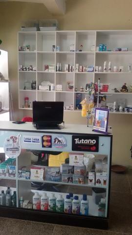 Clínica veterinária em Brazlândia