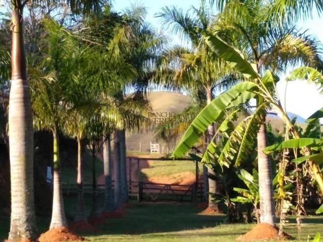 Linda Fazenda no Vale do Paraiba, porteira fechada - Cód 1505 - Foto 11