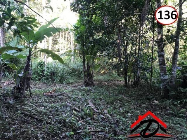 Sítio em Paraty a 8 km de Trindade- 10.000 m2 - Foto 3