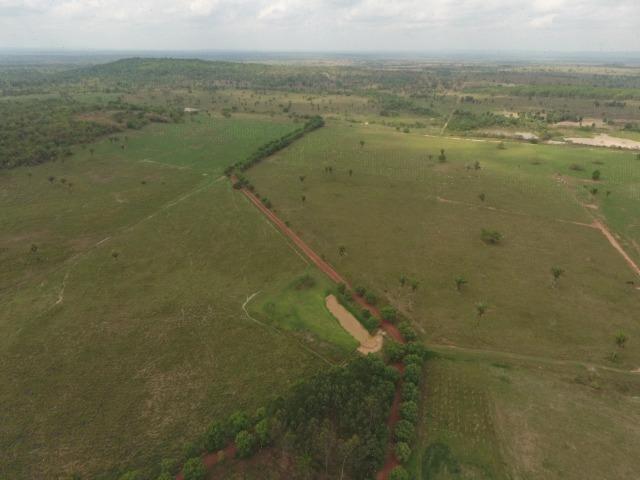 Fazenda 5.900 há (1.219 alq) pronta para produção Bovina norte do Tocantins - Foto 14