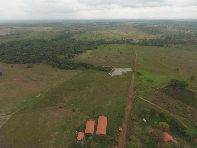 Fazenda 5.900 há (1.219 alq) pronta para produção Bovina norte do Tocantins - Foto 12