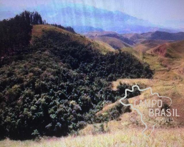 Campo Brasil Imóveis, realizando seu sonho rural! Fazenda de 100aq no Vale do Paraíba! - Foto 6