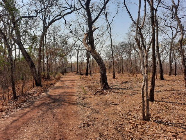 Terreno rio Cuiabá  1.250,00sinal restante parcelado  - Foto 11