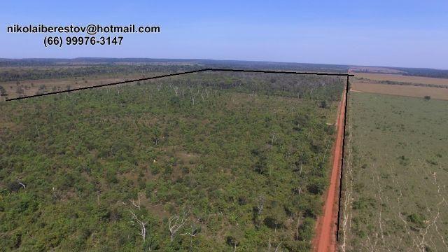 Fazenda 106 hectares nordeste mt nikolaiimoveis