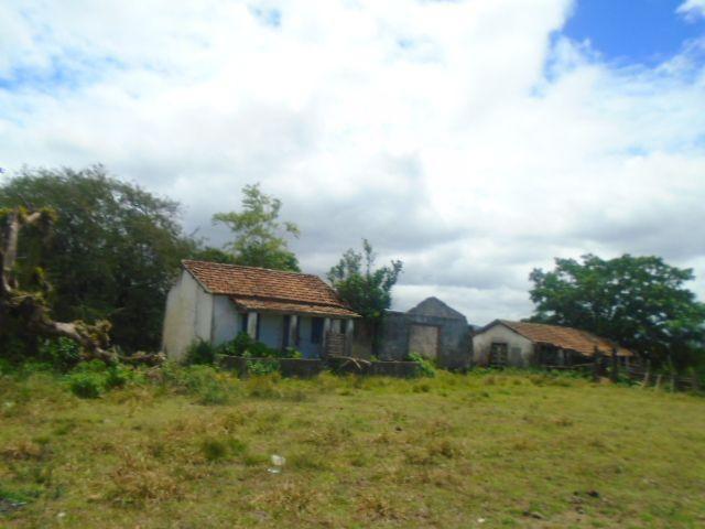 Código 223 Fazenda localizada no Retiro, próxima a RJ 106, Maricá-RJ - Foto 13