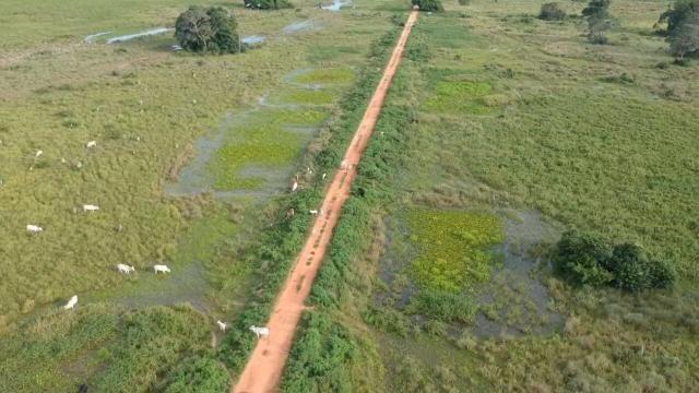 Fazenda 9.715 hectares no pantanal de Poconé MT - Foto 19