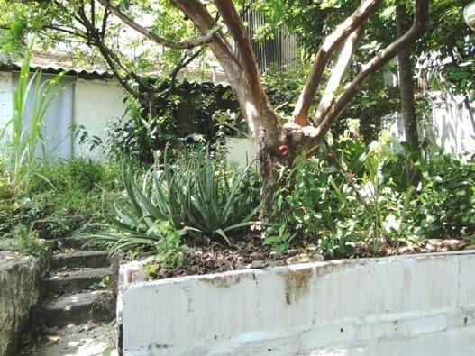 Casa com 3 dormitórios à venda, 150 m² por r$ 590.000 - carlos prates - belo horizonte/mg - Foto 8