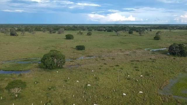 Fazenda 9.715 hectares no pantanal de Poconé MT - Foto 14