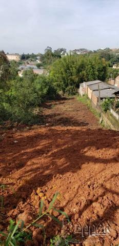 Terreno à venda em Rondônia, Novo hamburgo cod:17181 - Foto 3