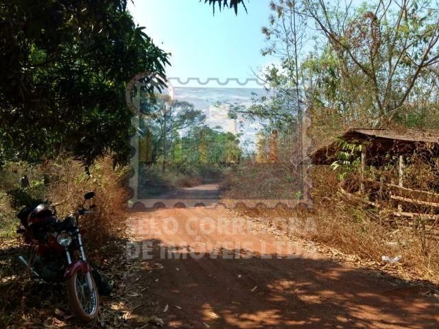 Otima Fazenda Muni. de Santo Antonio de Leveger a 20 km de Cuiabá - Foto 7