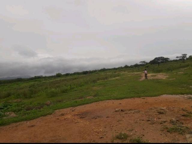 Fazenda rural em forquilha - Foto 13