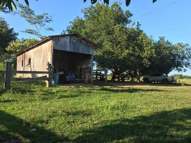 Fazenda no Acre - Foto 3