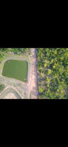 Sentido Amazonas  - Foto 3