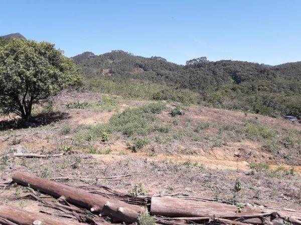 Sítio Localizado na Estrada Geral, Alto Braço Baú, 45 mil m² - Foto 2