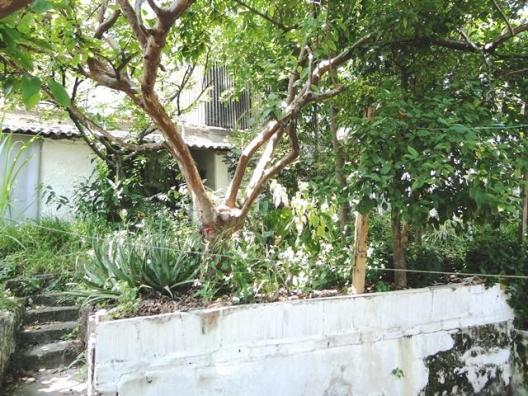 Casa com 3 dormitórios à venda, 150 m² por r$ 590.000 - carlos prates - belo horizonte/mg - Foto 12