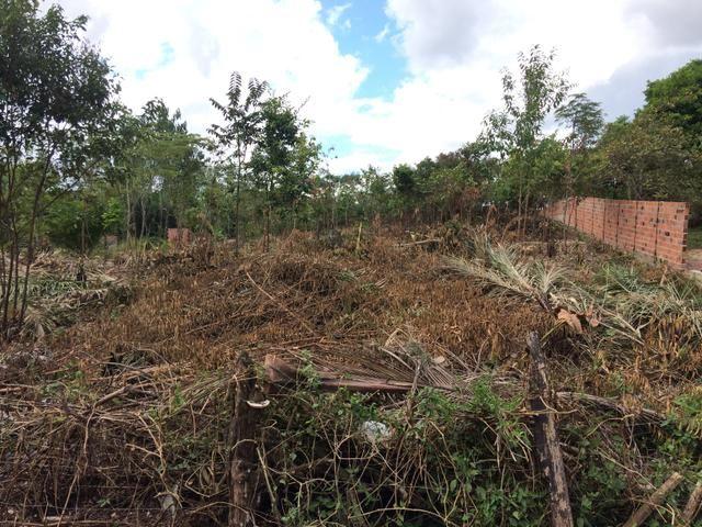 Vendo um terreno de 30 X 60 m em Bacabeira - MA - Foto 3