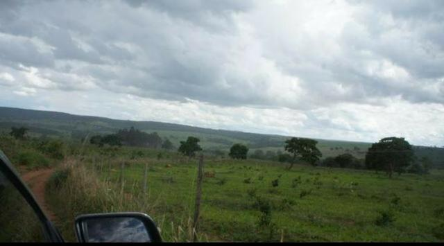 Fazenda 225 km de Goiânia município de Ipameri - Foto 12