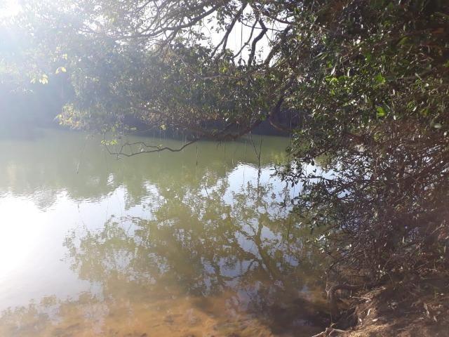 Chácara 04 hectares - Flores de Goiás - Foto 19