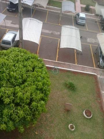 Apartamento com 3 dormitórios à venda, 52 m² por R$ 150.000,00 - Monte Castelo - Campo Gra - Foto 10