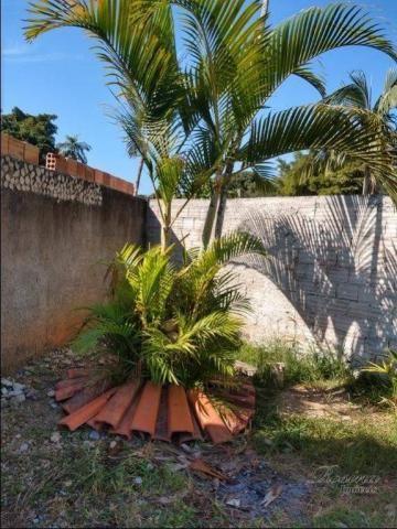 Casa térrea de madeira com 3 quartos - Reta da América - Morretes/PR - Foto 3