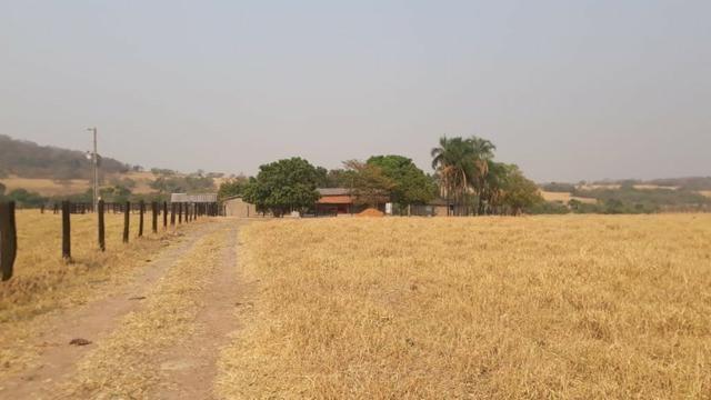 Fazenda no município de Edeia - GO