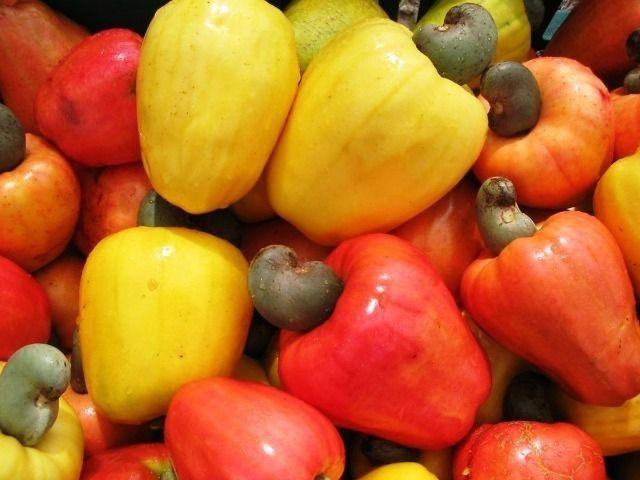Viveiro plantas mudas frutas e nativas pouso alto sao lourenço entregamos - Foto 3