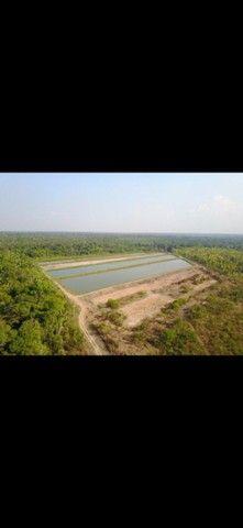 Sentido Amazonas  - Foto 2